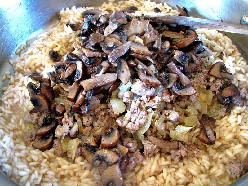 Italian Sausage and Mushroom Risotto - Christina's Cucina