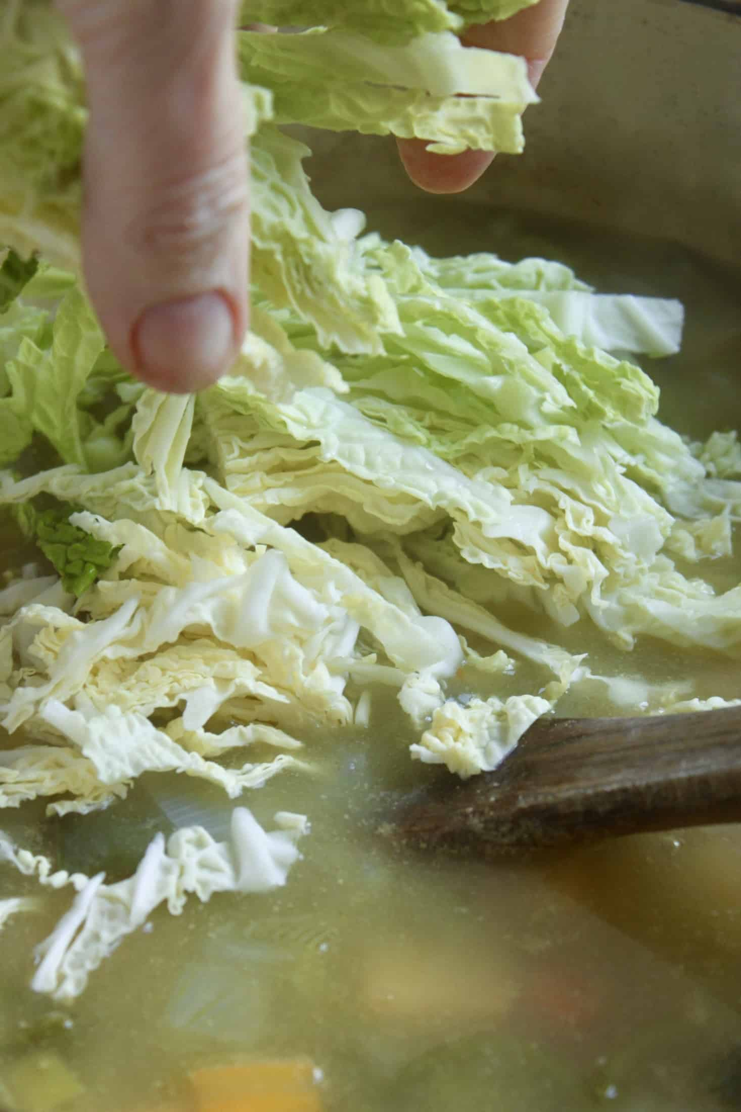 adding cabbage to soup