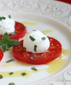 Tomato, Ricotta and Basil Antipasto