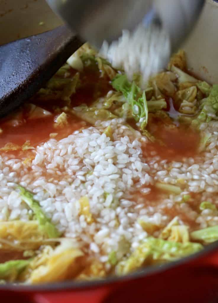 southern italy italian cabbage and rice parmesan arborio rice easy quick recipe