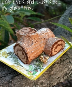Yule Log (Made Easily, Delicious and Gluten Free!)
