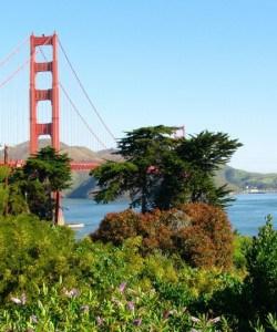 Delicious San Francisco