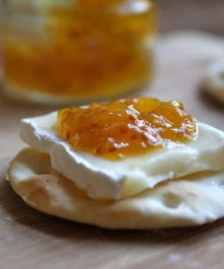 brie fig jam crackers french appetizer
