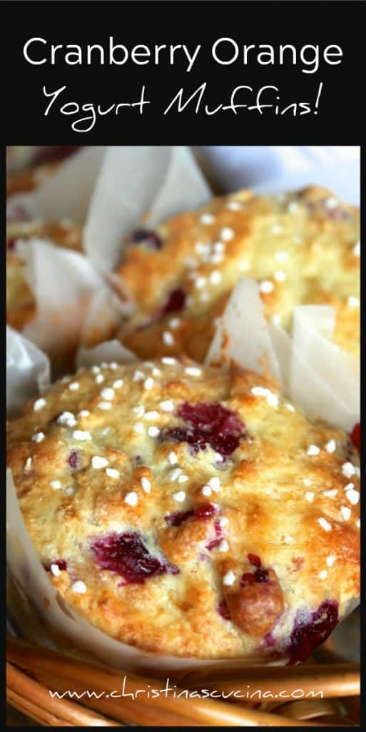 Cranberry Orange Yogurt Muffins recipe