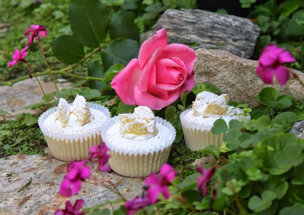 Butterfly cupcakes in the garden