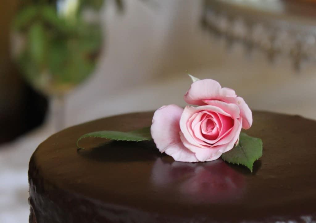 Rose on chocolate