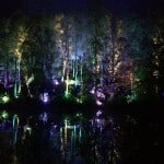 The Enchanted Forest in Pitlochry is a Must See if you are in Scotland!