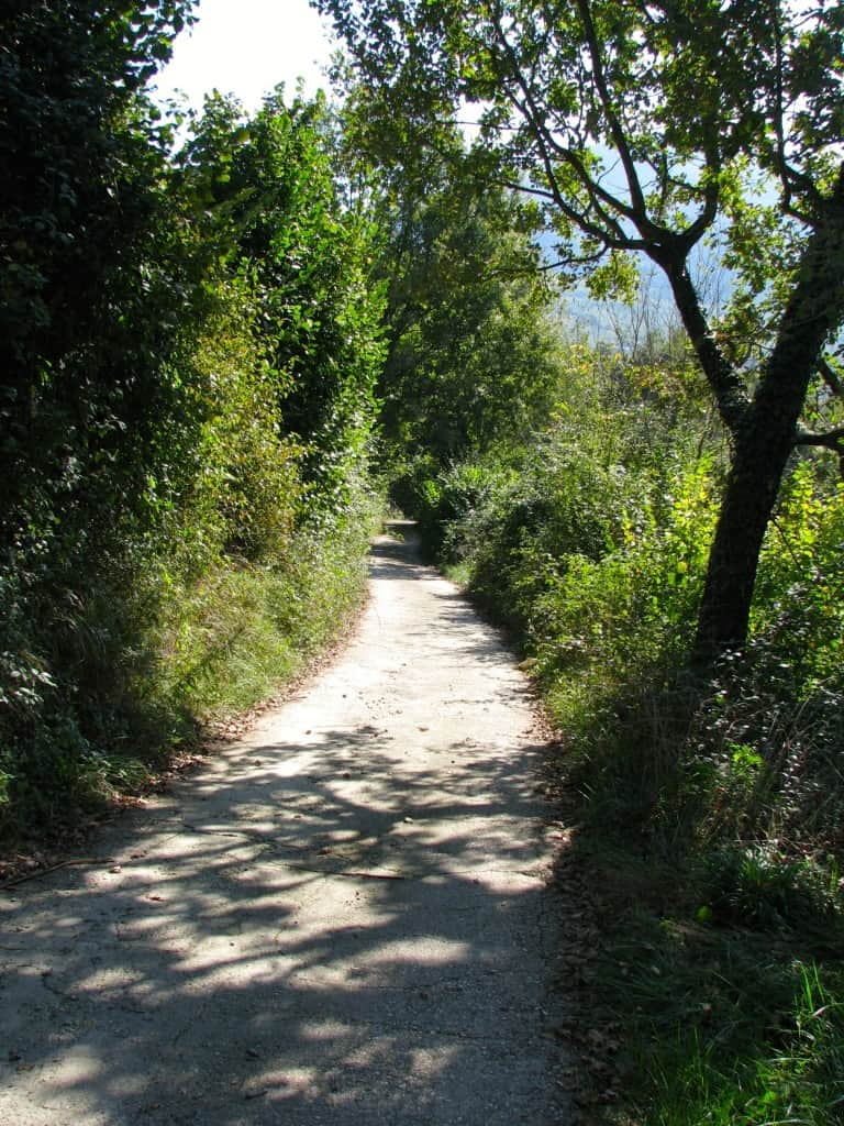 path in picinisco