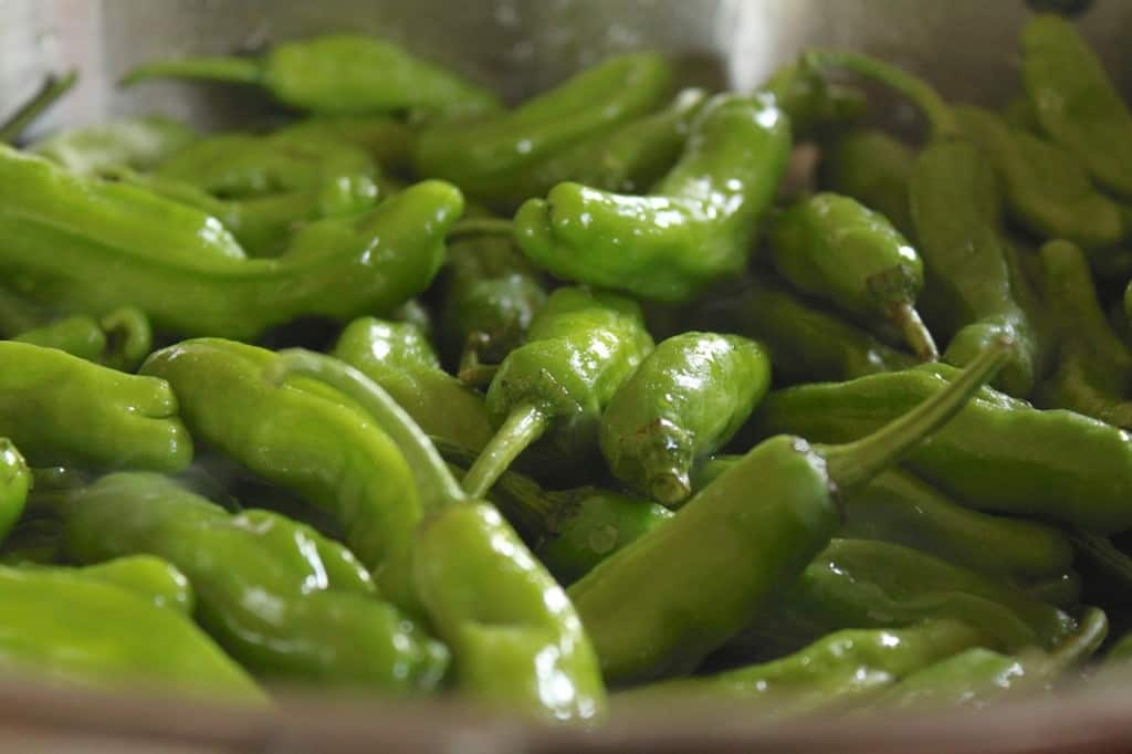 adding shishito peppers to a pan