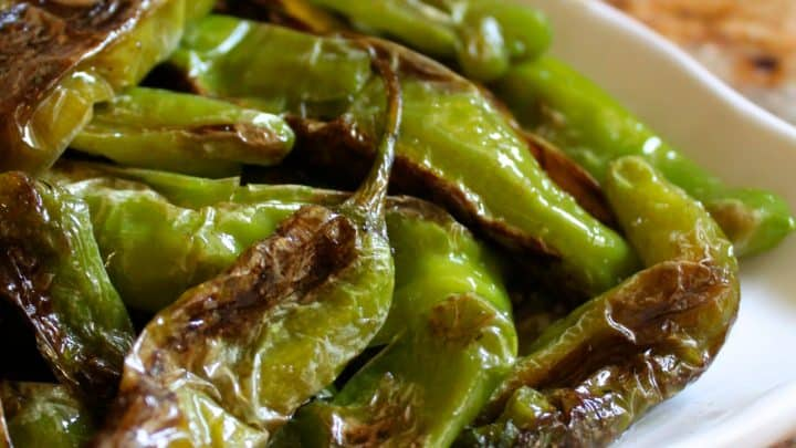 Dear Shishito Peppers: Where Have you Been all my Life?