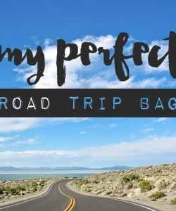 My Perfect Road Trip Travel Bag and a Kindle and Travelon Giveaway!