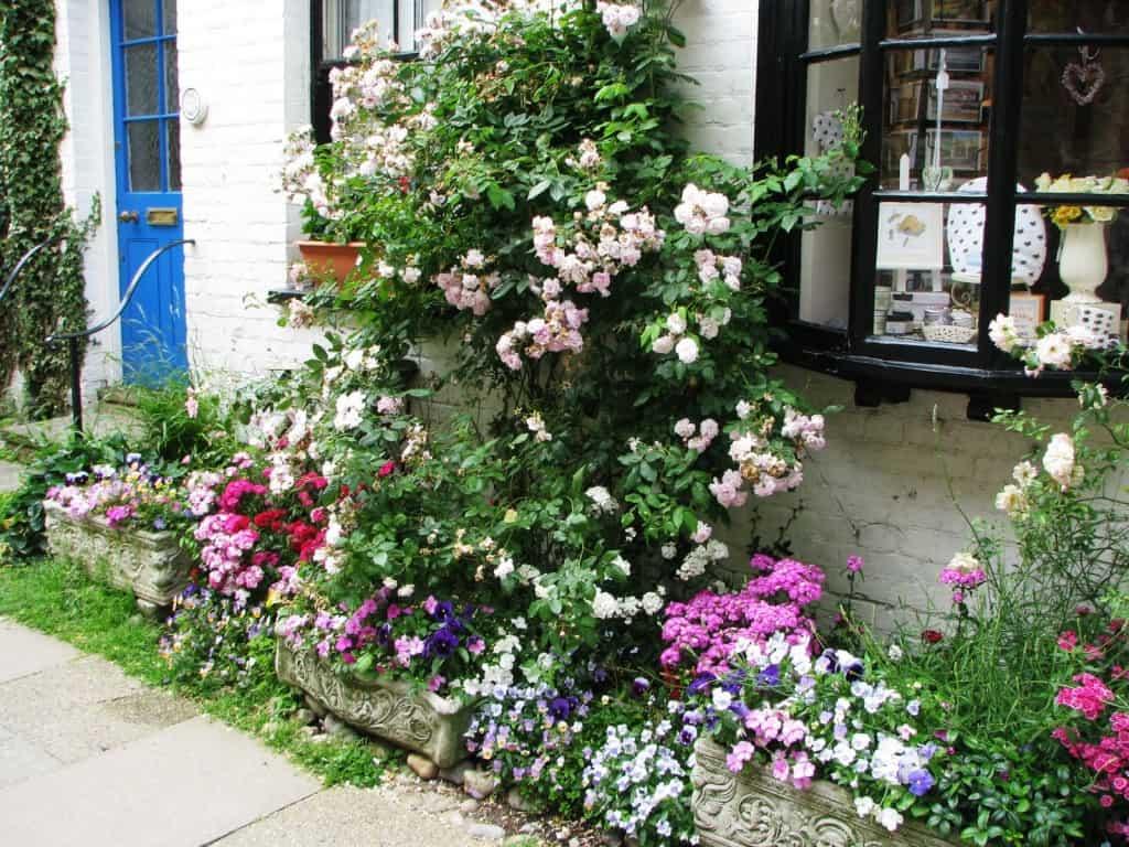 Flower display in Rye, East Sussex