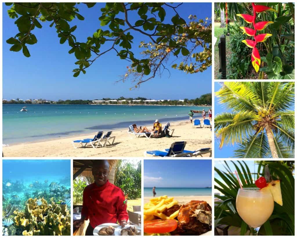 jamaica-tieks