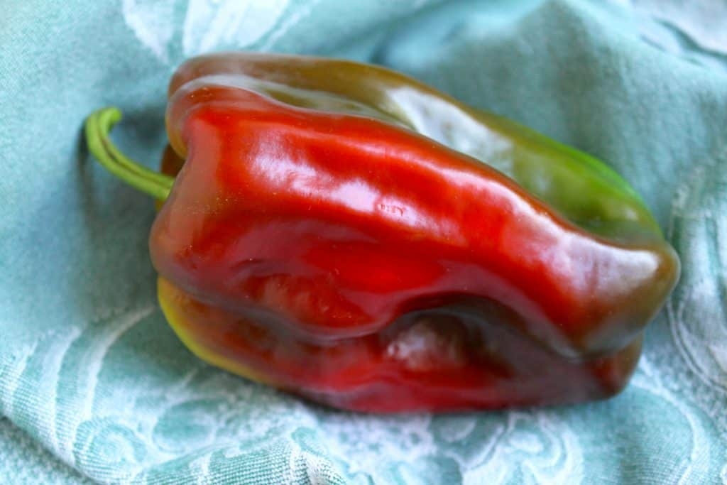 Red and green sweet pepper