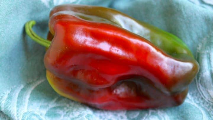 How to Eat a Sweet Pepper in a Very Unique Way: an Inside Out Pepper Salad