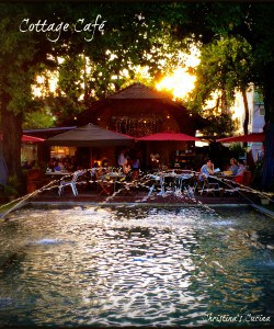 The Cottage Cafe and A Photographic Tour of Geneva, Switzerland (Part 2)