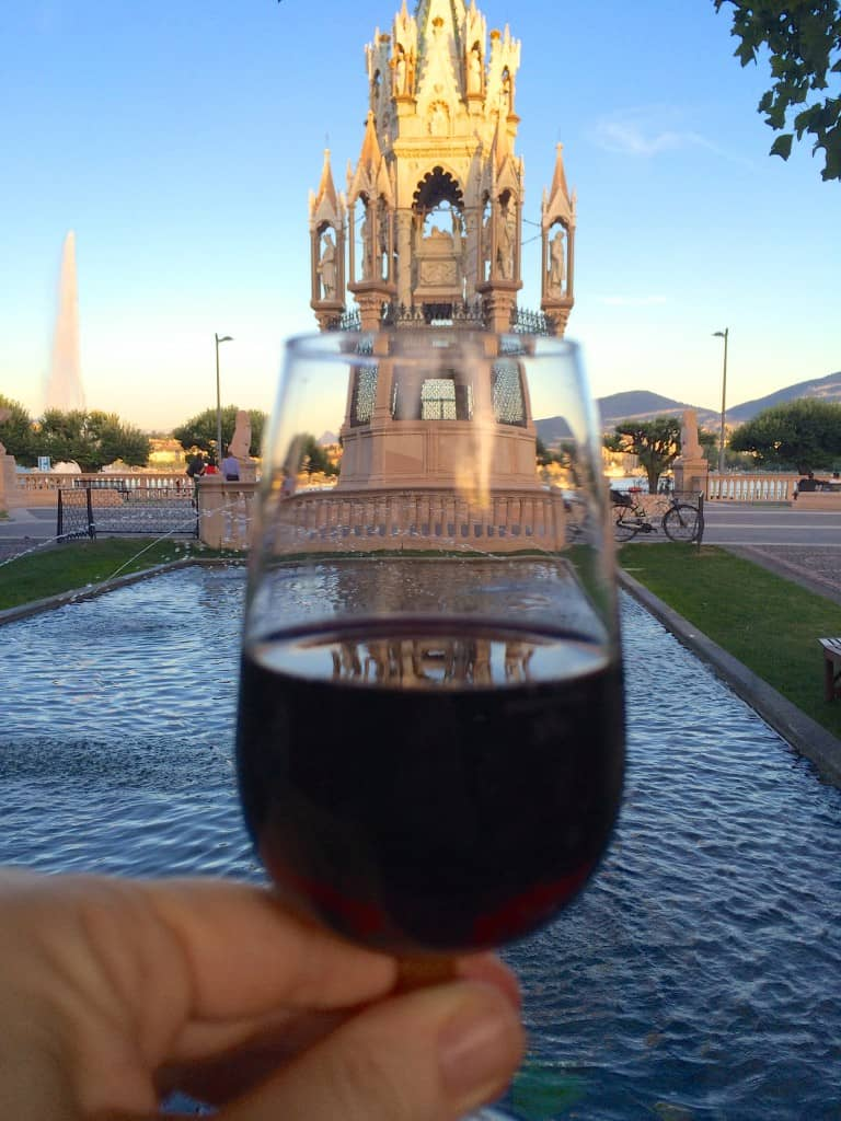 Glass of wine and the Brunswick Monument
