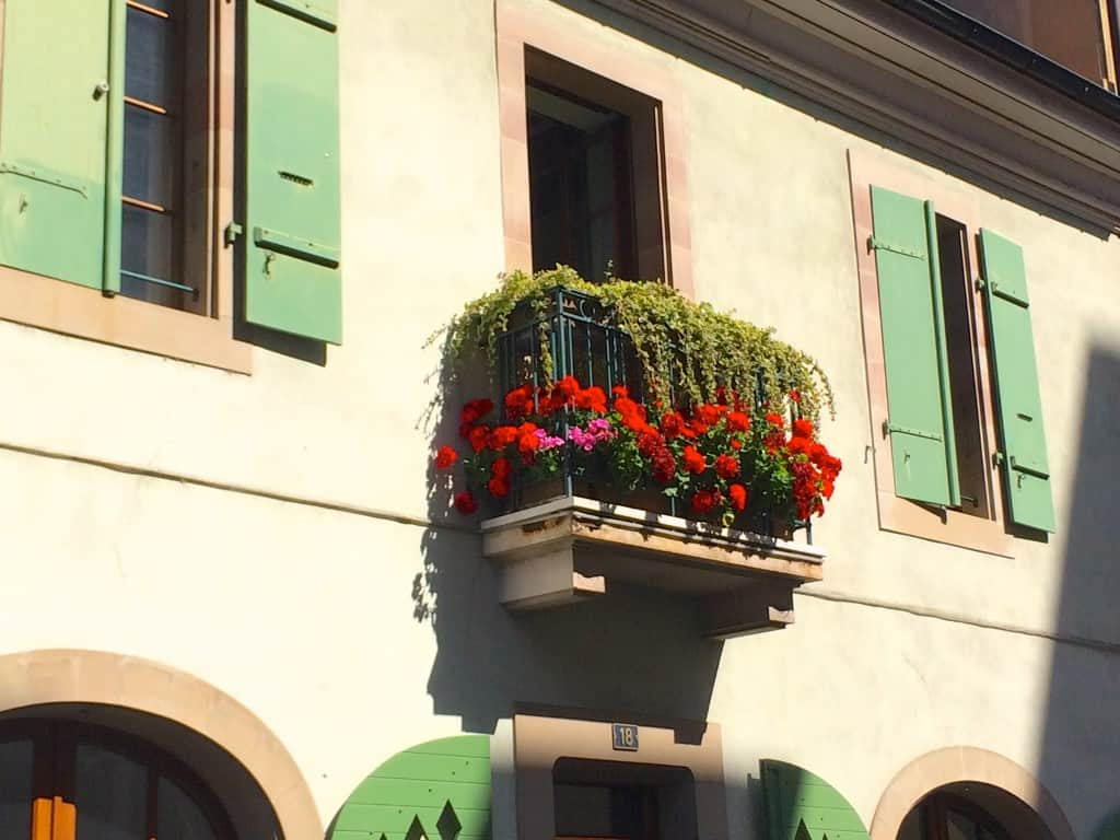 Geranium balcony in Carouge