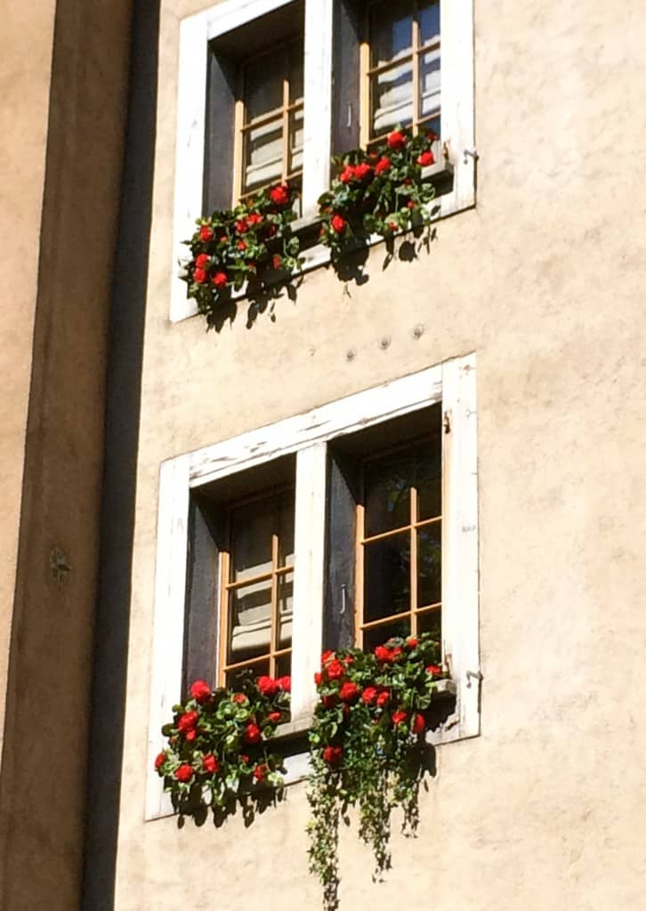 Window flowers Geneva Christinas Cucina