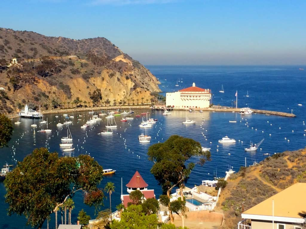 Catalina Island: view of Avalon Bay- Christina's Cucina