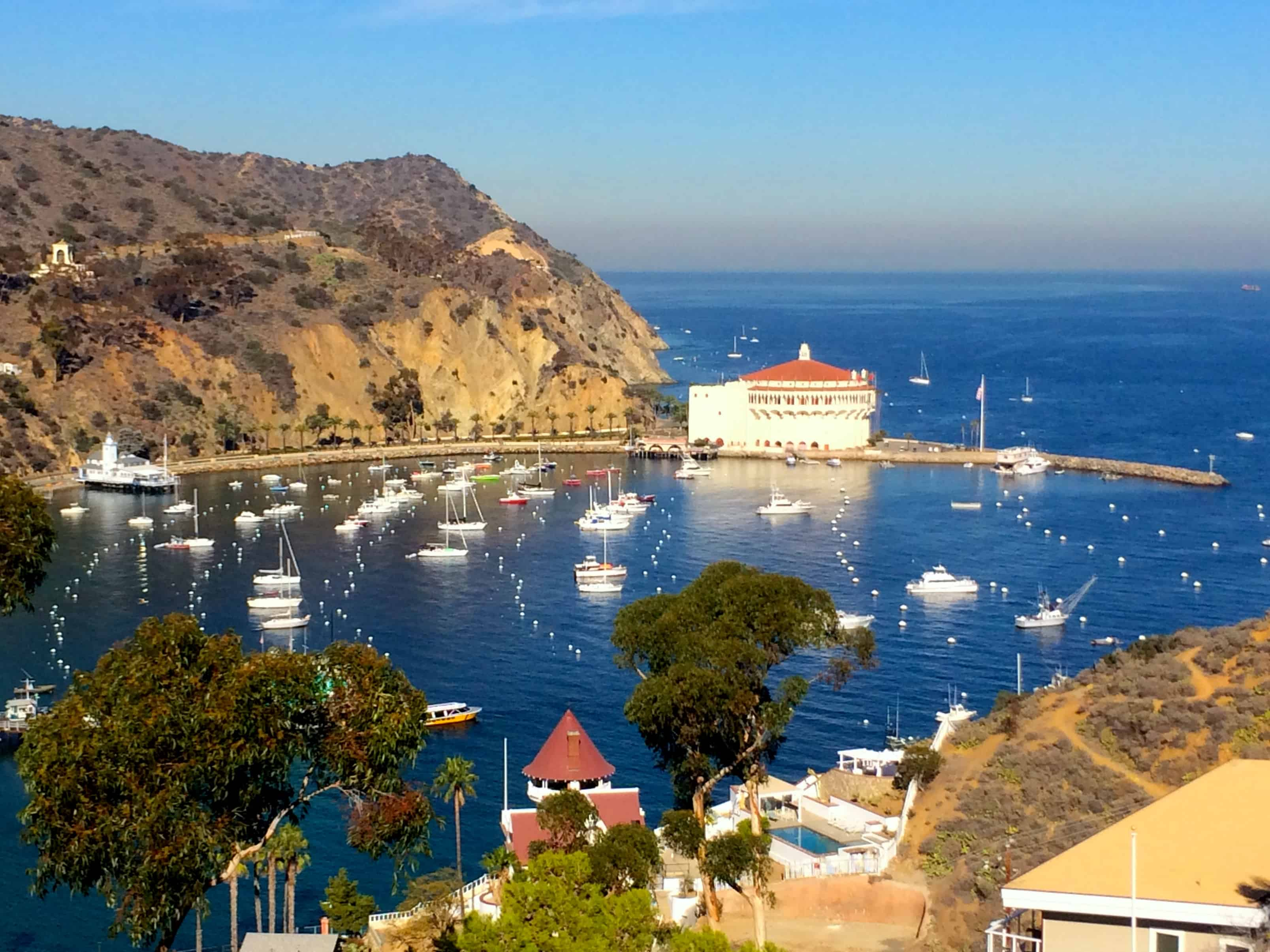 Catalina island the perfect getaway in southern for The catalina