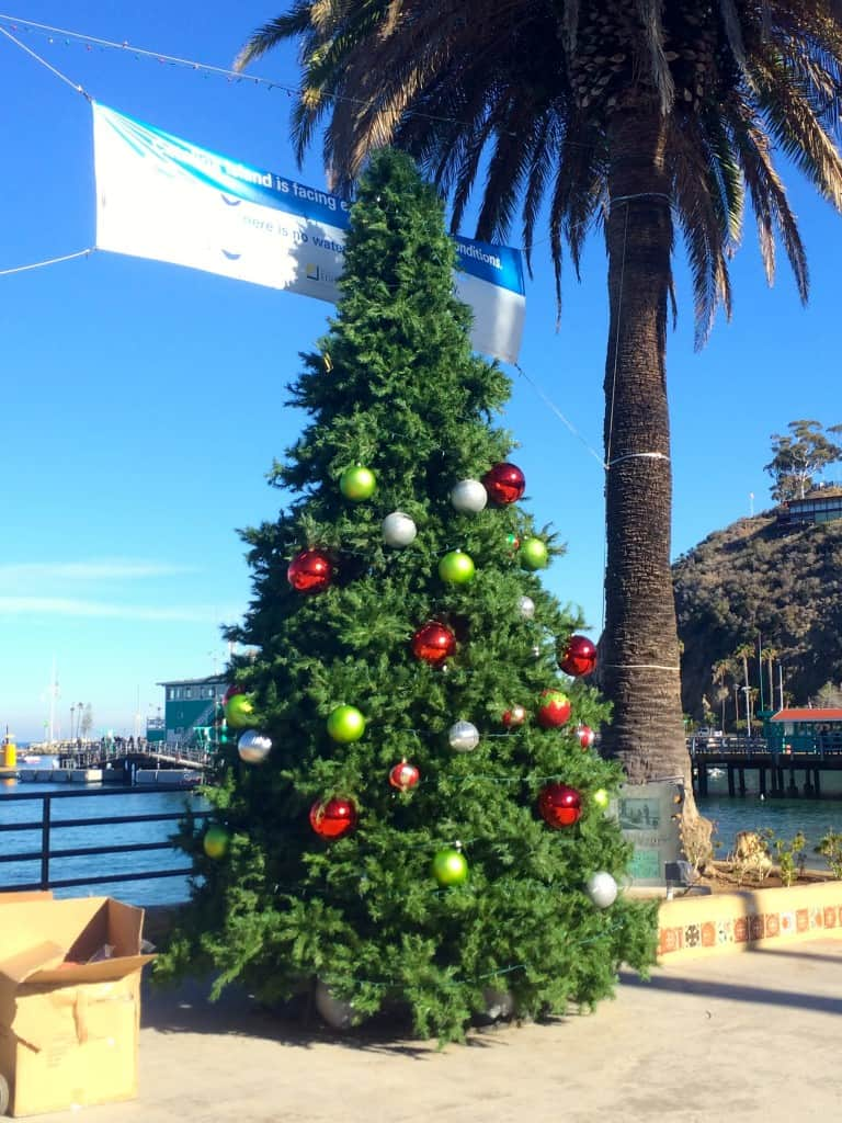 Christmas tree in Avalon, California
