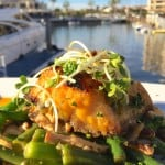 Newport Beach Girls' Day Out, Dining at Bluewater Grill & a Gift Card Giveaway!
