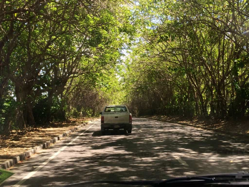 taxi drive to Negril