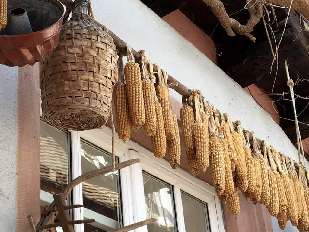 Corn and wine jug hanging in Riquewihr, France.