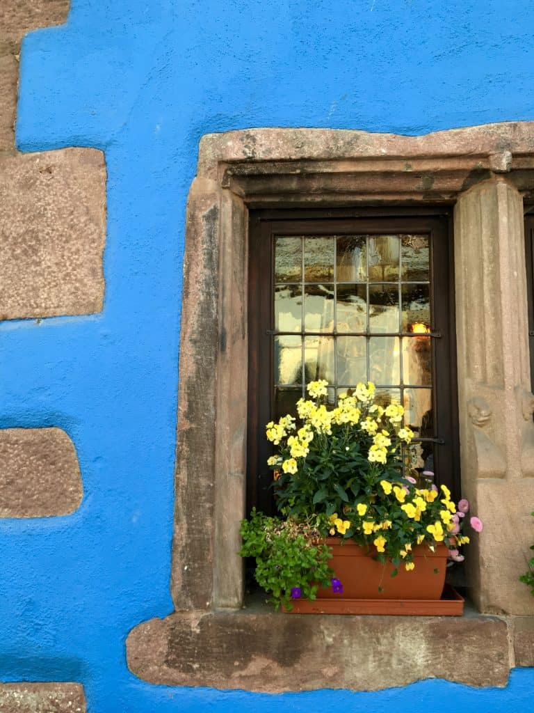 Window in Riquewihr.