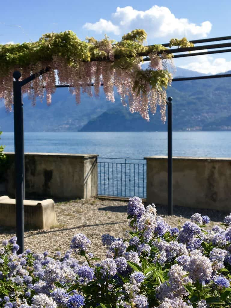 Pink wisteria near Lake Como