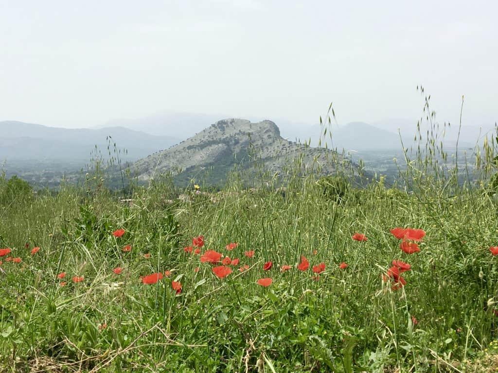 Monte Trocchio in Lazio.