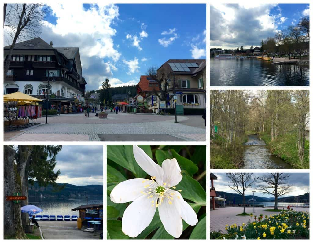 Titisee in the Black Forest, Germany