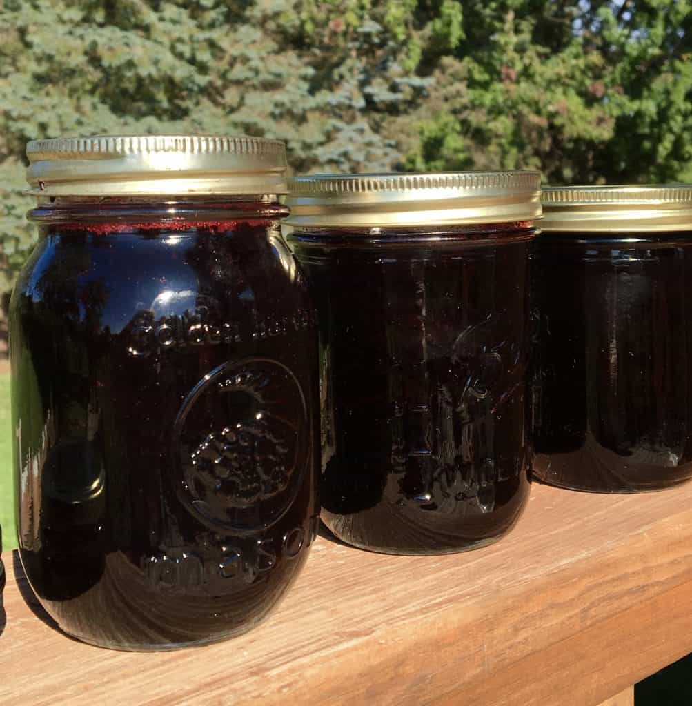 Blackcurrant jam in jars