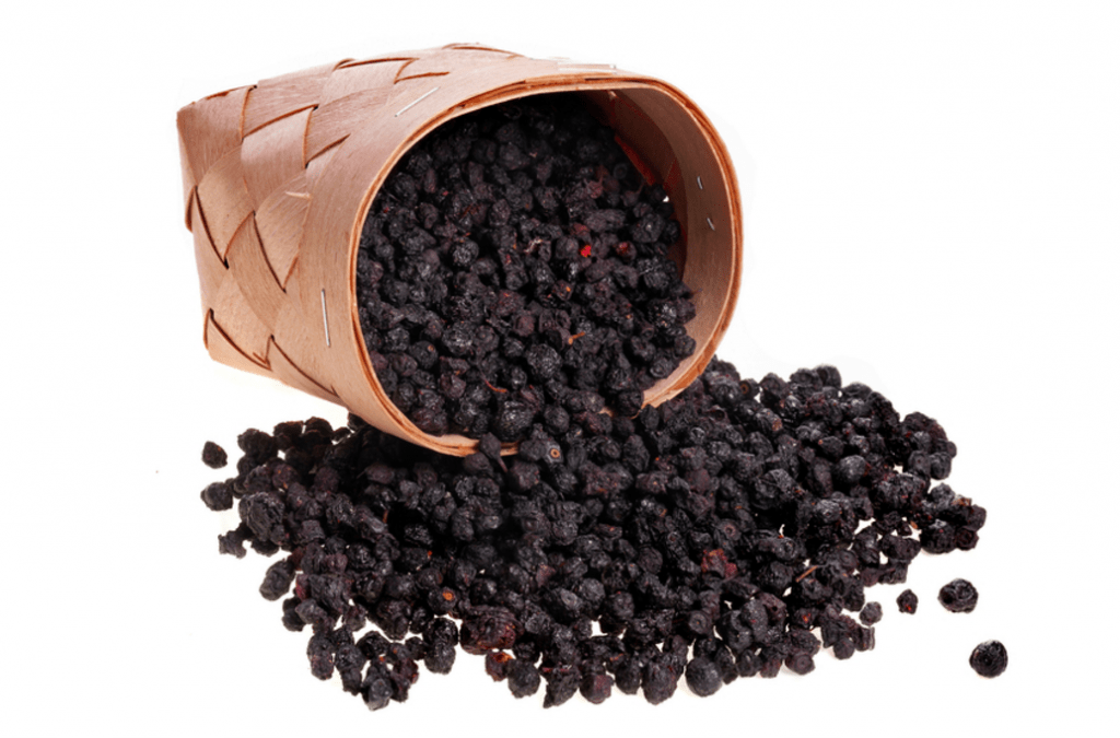 Actual dried blackcurrants from CurrantC