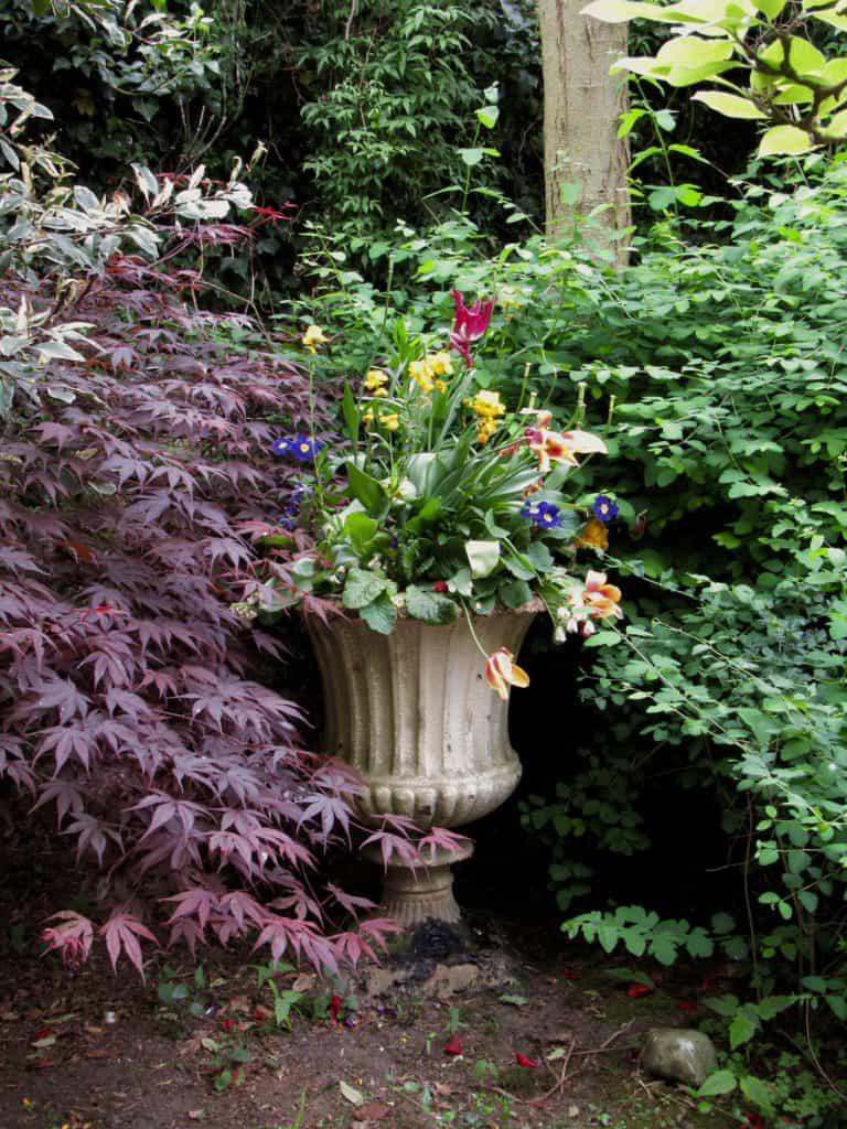 Planter at Tatton Park