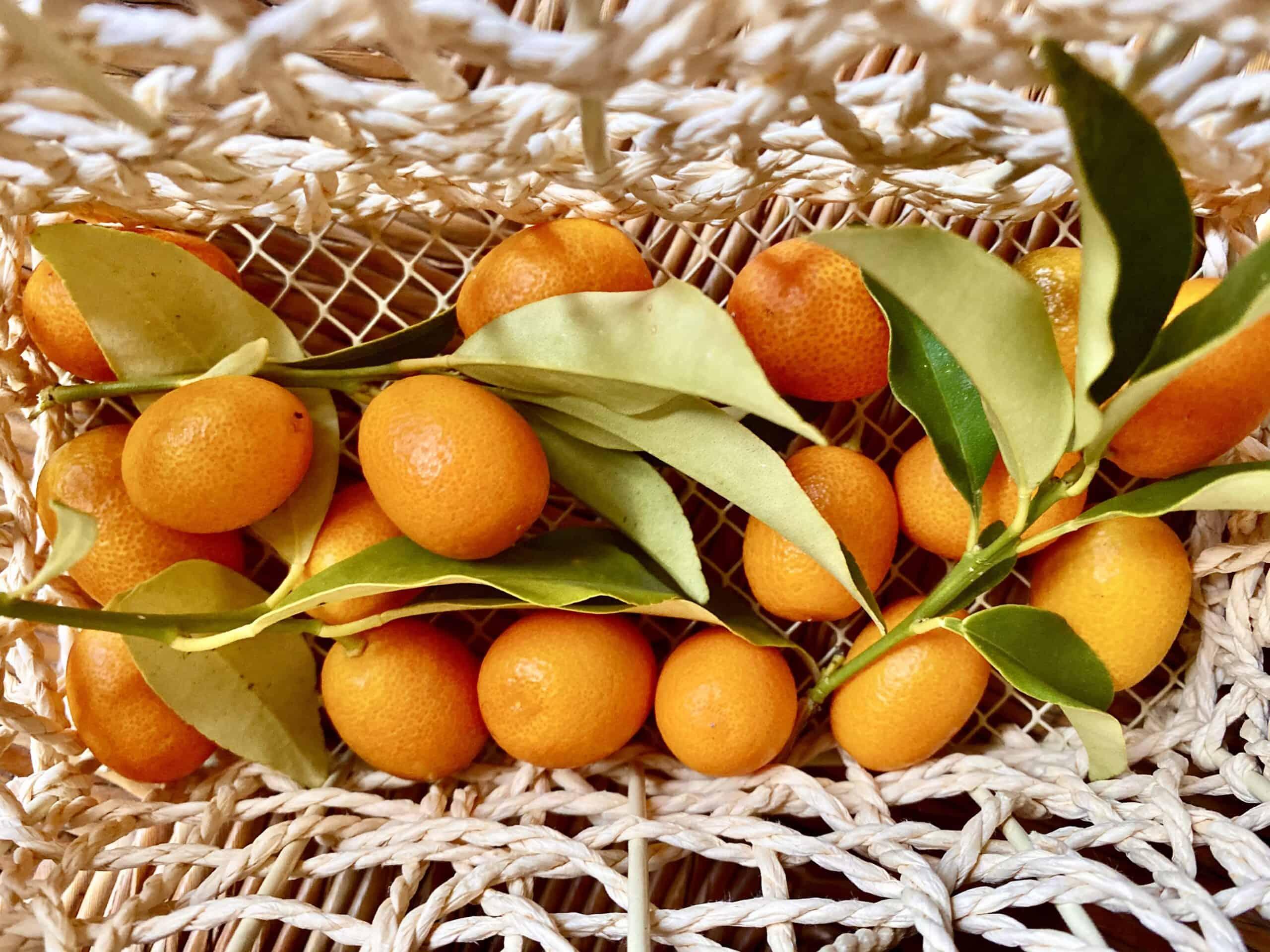 kumquats in a basket
