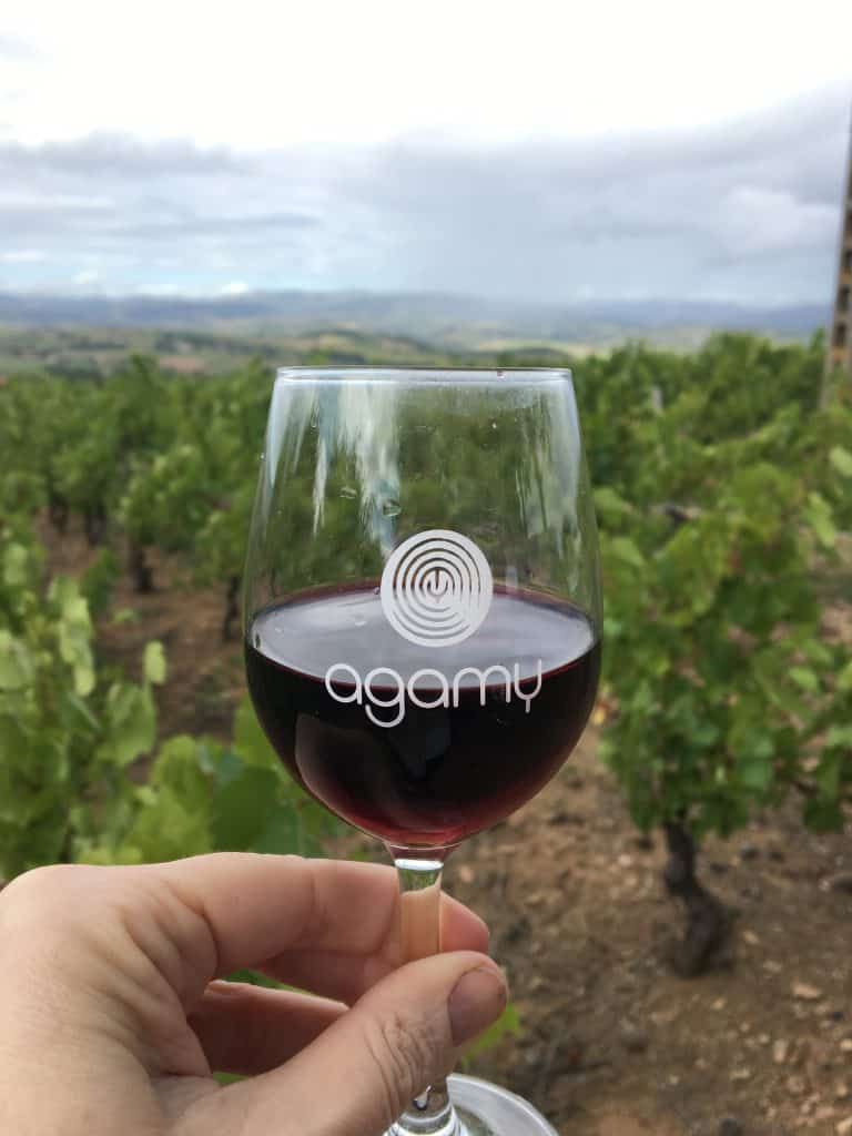Agamy wine
