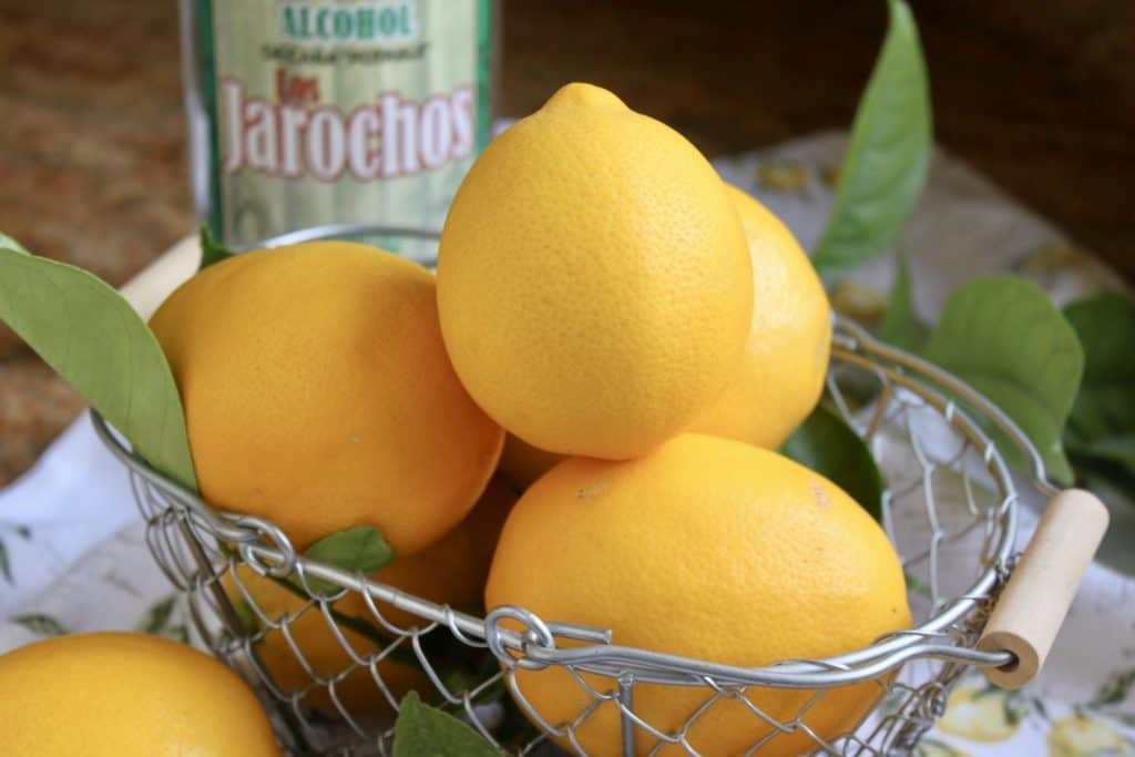 Meyer lemons in a basket for limoncello