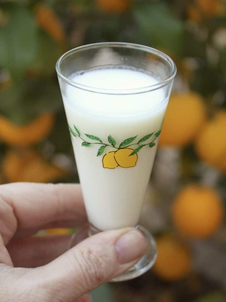 glass of crema di limoncello