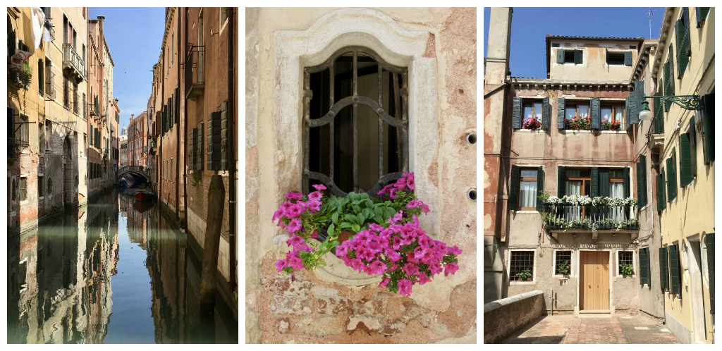 Collage of Venice with flowers