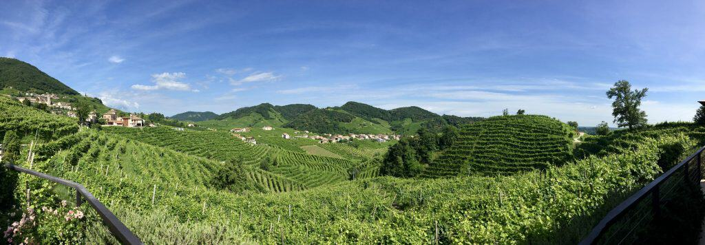 A day trip to Valdobbiadene (vineyard view)