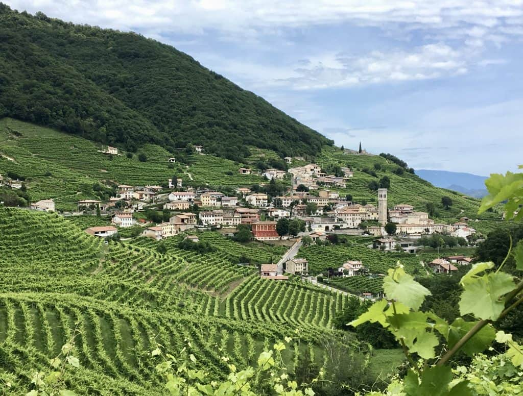 A day trip to Valdobbiadene vineyards