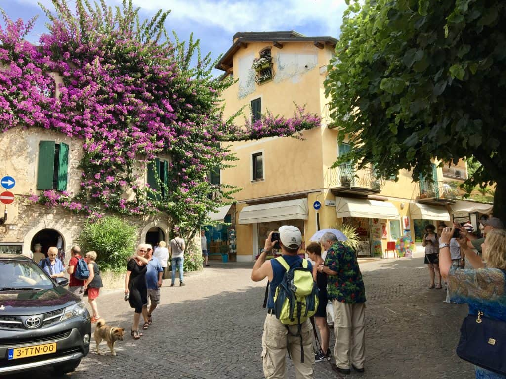 Bougainvillea in Sirmione