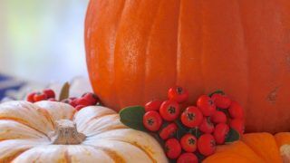 How to Prepare a Pumpkin (How to Cook, Bake or Roast a Pumpkin)