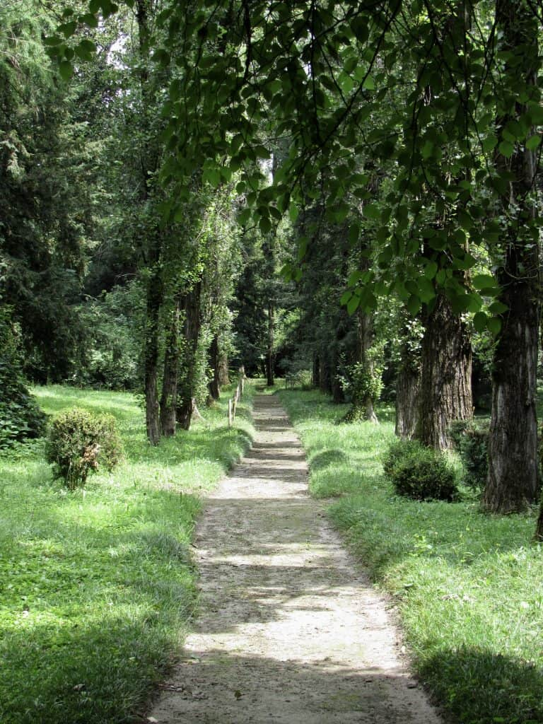 pathway on Verdi's estate