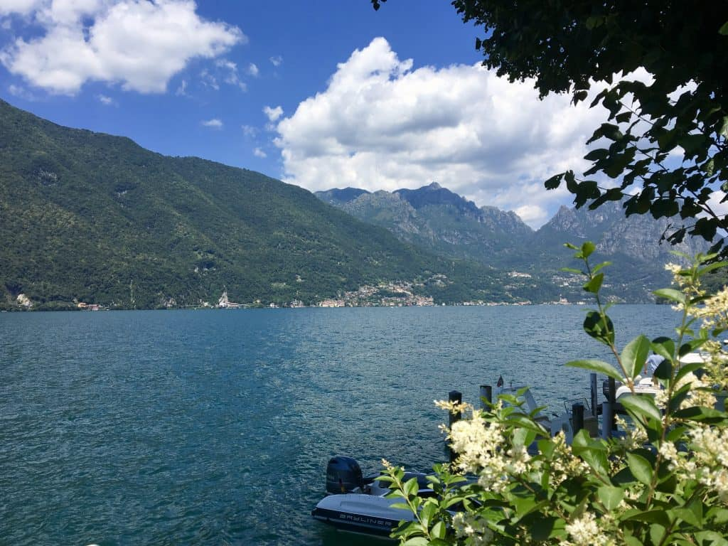 cruise and cook lugano