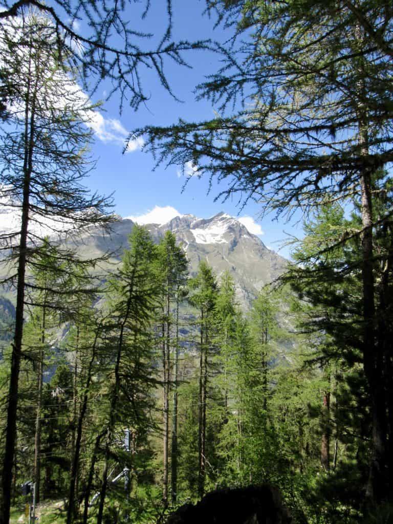 views from Zermatt