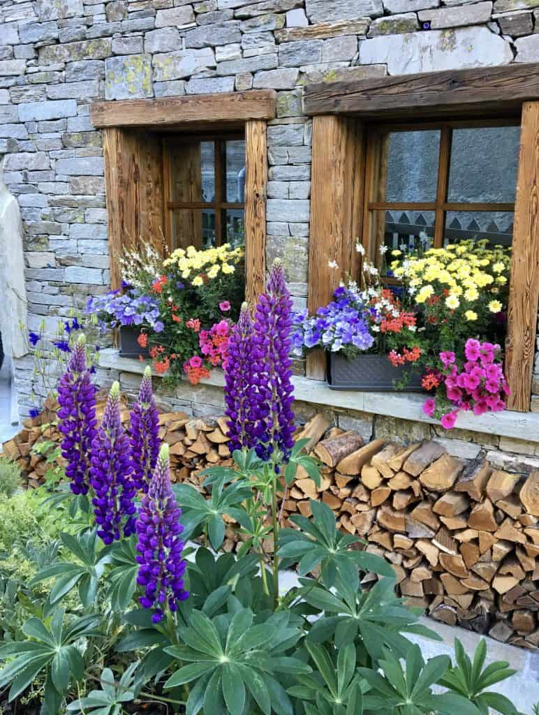 Flowers on a sill in Zermatt