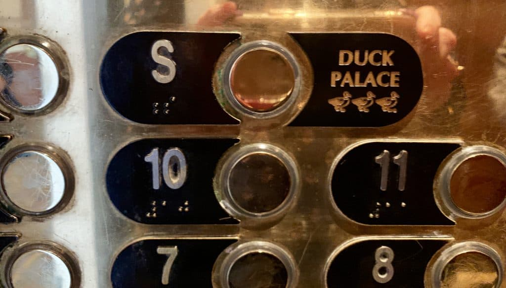 Duck palace elevator button.